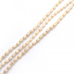 Fresh Water Pearl Bead Irregular (~4x5mm) (~66pcs/string)