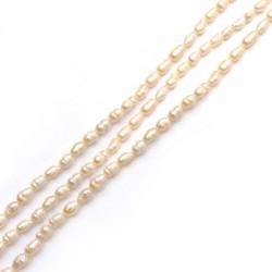 Perle d'eau douce irrégulière (~4x5mm) (~66pcs/fil)