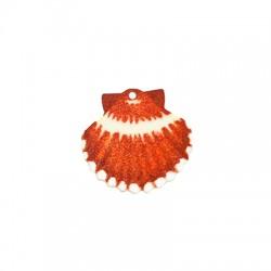 Plexi Acrylic Pendant Shell 35x33mm