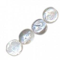 Μαργαριτάρι Χάντρα Στρογγυλή Πλακέ (~11-12mm)