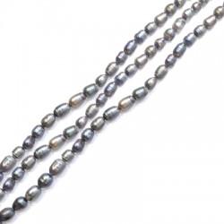 Perle d'eau douce irrégulière (~5x6mm) (~50pcs/fil)