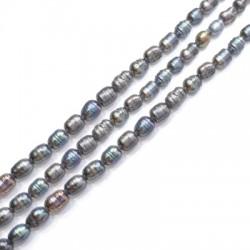 Perle d'eau douce irrégulière (~6x7mm) (~41pcs/fil)