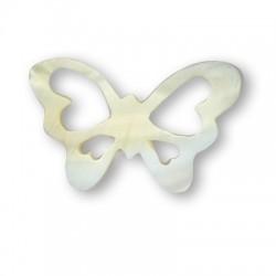 Shell Butterfly 33x53 / 2,5mm