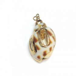 Shell Pendant with Metal  (~19x32mm)