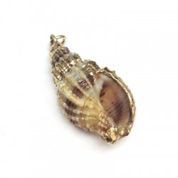 Shell Pendant with Metal  (~17x37mm)