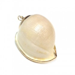 Shell Pendant with Metal  (~33x52mm)