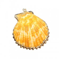 Shell Pendant with Metal  (~43x52mm)