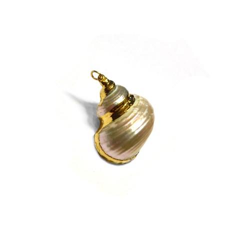 Ciondolo di Conchiglia Metallizzata ~20x30mm