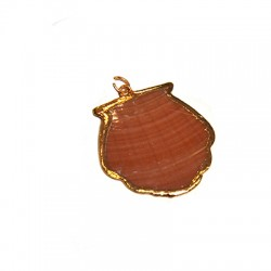 Shell Pendant with Metal (~30x29mm)