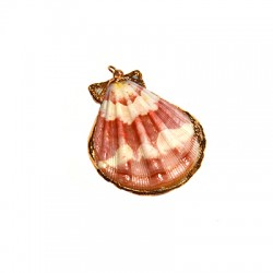 Shell Pendant with Metal (~38x40mm)