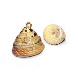 Shell Pendant w/ Metal Base ~20x25mm