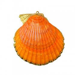 Sea Shell Pendant Plated (~58x62mm)