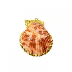 Sea Shell Pendant Plated (~35x50mm)