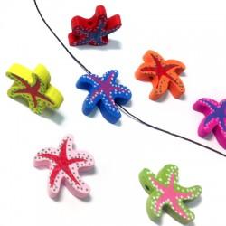 Wooden Starfish 20x21mm