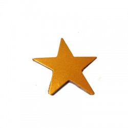 Leather Star 55mm