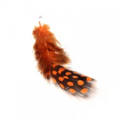 Feather Spots 70-120mm