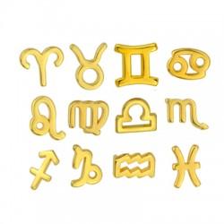 Zamak Charms 12 Zodiac Signs