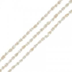 Perle d'eau douce (~2.5x3mm) (Ø1mm) (~62pcs/fil)