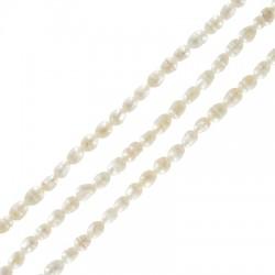Perle d'eau douce (~3.8x4.2mm) (Ø1mm) (~62pcs/fil)