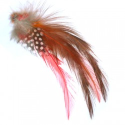 Feather ~12-15cm (mixed sizes)