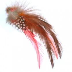 Φτερό Φασιανού (4 τμχ/πακέτο)