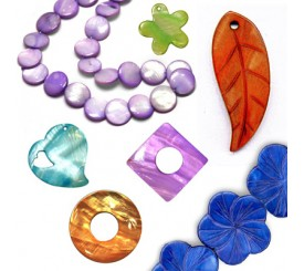 FRESH WATER SHELLS